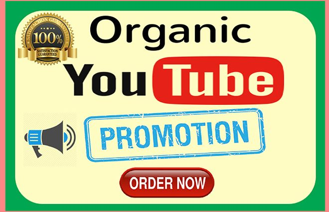 Purchase YouTube Subscribers Best Provider - Affordable Prices
